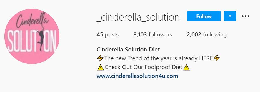 Instagramm Cinderella Solution Fake Account 2