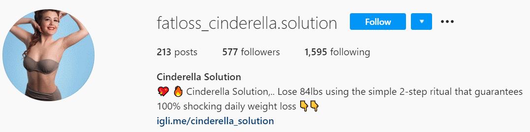 Instagramm Cinderella Solution Fake Account 5