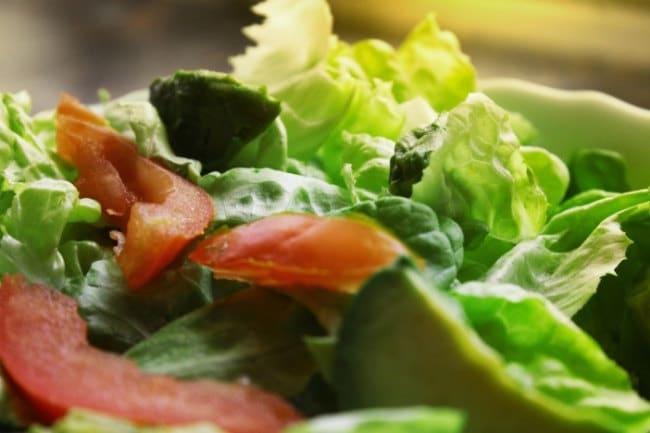 Vegetarian Metabolic Cooking